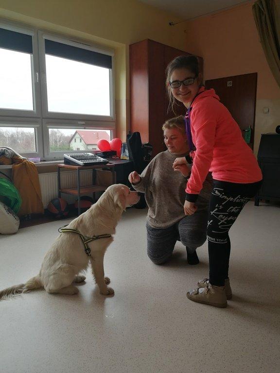 zajęcia z dog terapii - dziewczynka z psem i Panią terapeutką