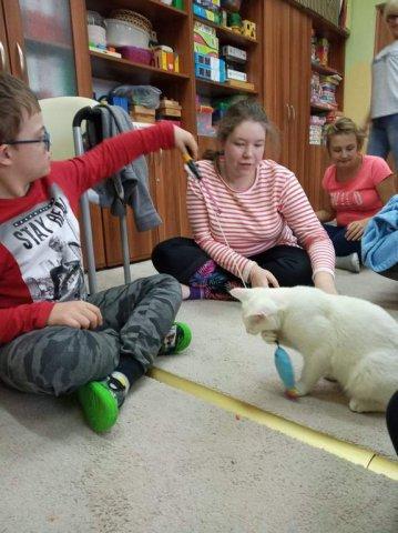 Felinoterapia - na zdjęciu grupa dzieci z kotem